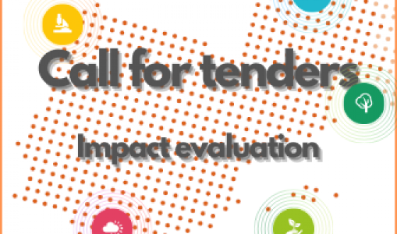 Call for tender | Impact assessment of the Interreg Sudoe programme 2014-2020