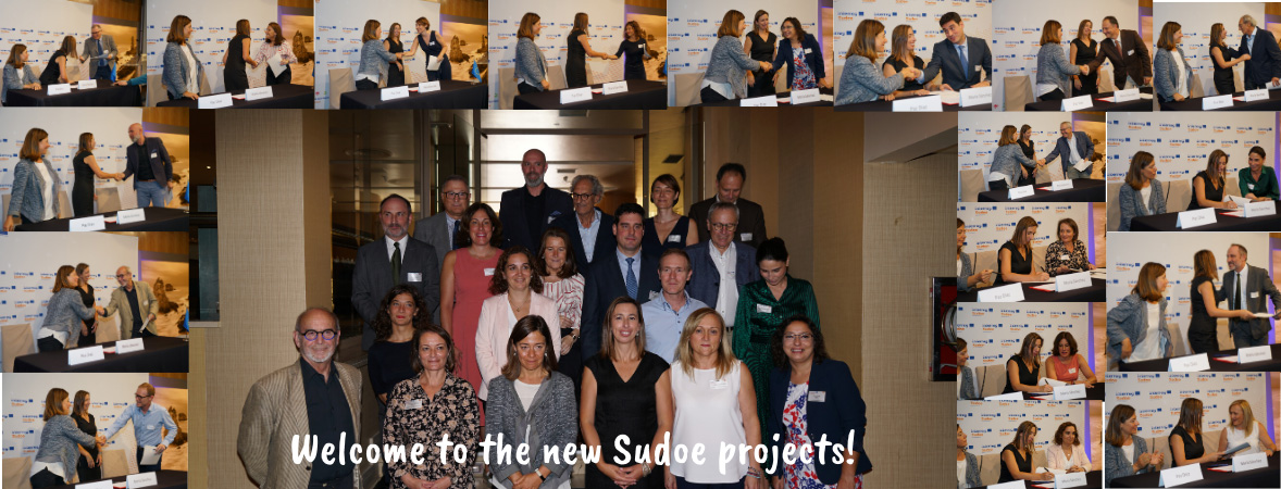 Welcome to the new Sudoe projects!